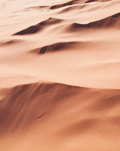 Exodus 4:1-31 Moses reassured to return to Egypt